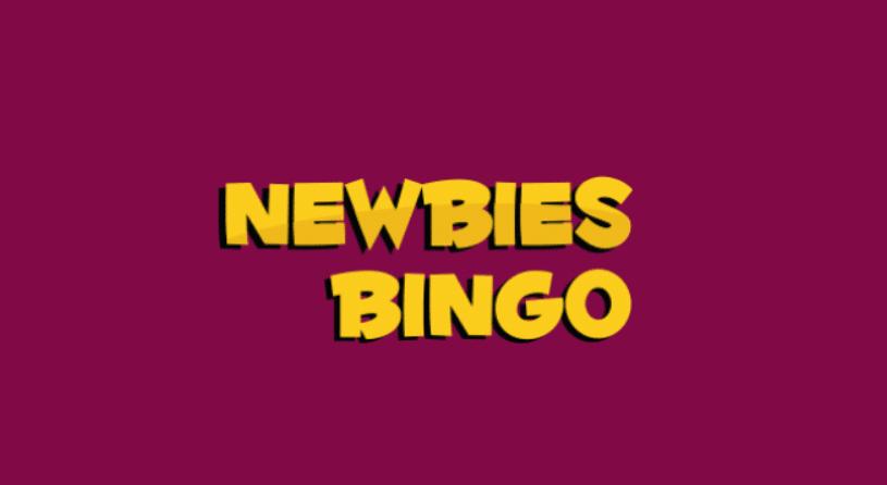 newbies bingo review