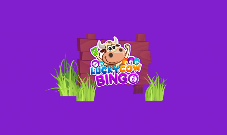 lucky cow bingo review